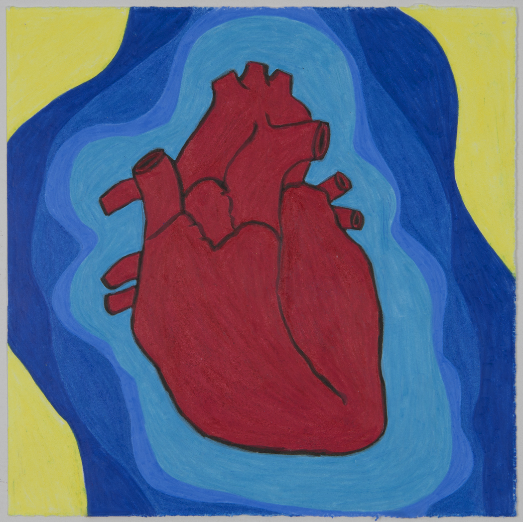 Heart in Primaries